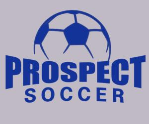 Soccer 16